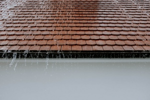 Water Damage Restoration for Your Roof