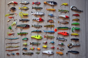 Fly Fishing For Bass: 7 Things You Might Be Doing Wrong